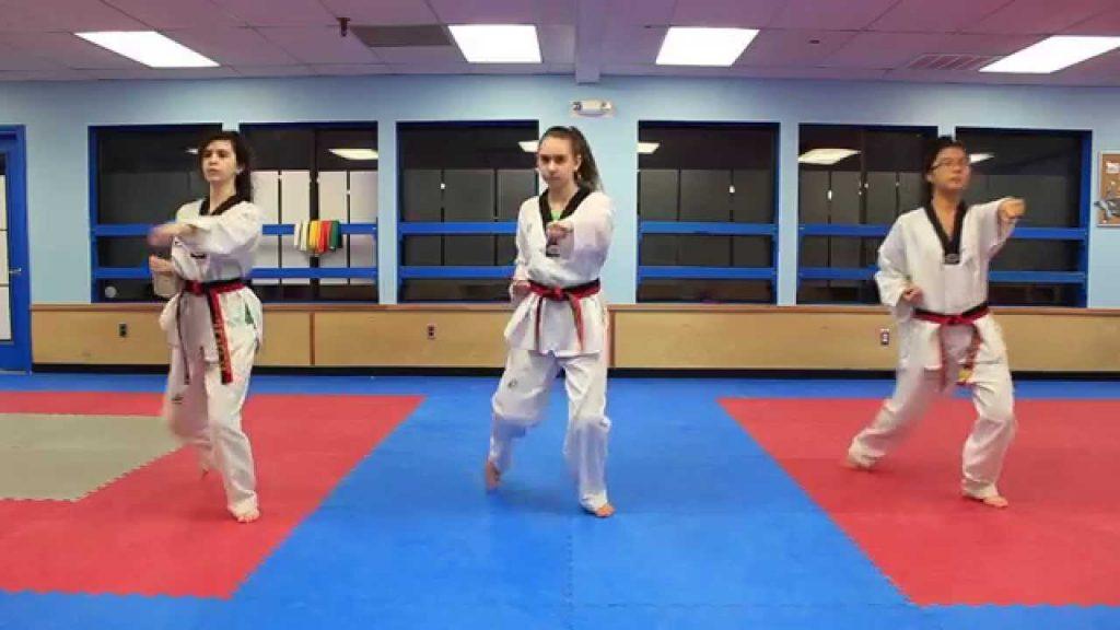 Beginners Guide for Taekwondo